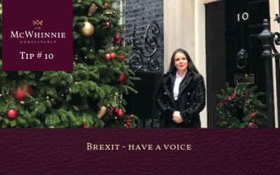 Countdown to Christmas Tip #10 – Brexit – Have a voice