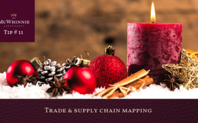 Countdown to Christmas Tip #11 – Trade & supply chain mapping.